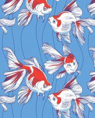 pesci_